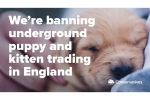 Banning puppy and kitten trading